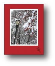 Crab Apple holiday card