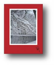Snow Fence holiday card