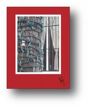 Tree Lights holiday card