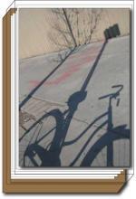 Bike Shadow box set